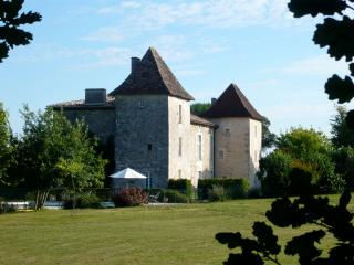 Nice Chateau with Internet Access and Tennis Court - Saint-Aulaye vacation rentals