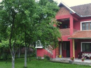 Lovely House with Internet Access and Satellite Or Cable TV - Kraljevo vacation rentals