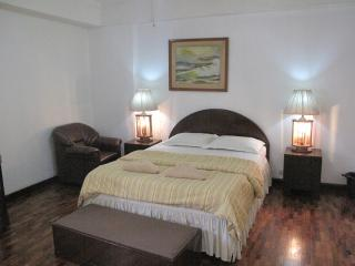 Suite 703, Spacious (48Sq.M) 1Br Apartment Makati - Makati vacation rentals