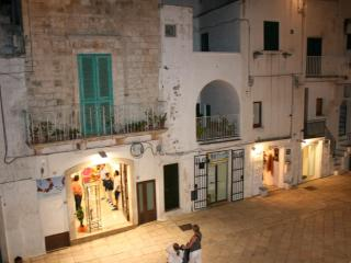 Bright House with Television and DVD Player in Cisternino - Cisternino vacation rentals