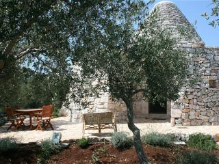 Nice House with Parking and Grill - Casalini di Cisternino vacation rentals
