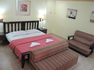Suite 802, Elegant Spacious, Makati Avenue - Makati vacation rentals