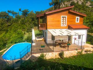 Villa Sedir - Islamlar vacation rentals