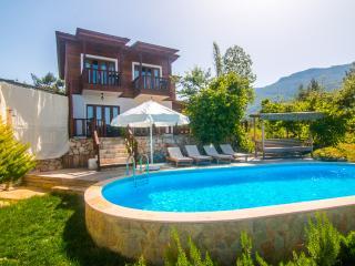 Villa Defne - Islamlar vacation rentals