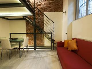 CENTRAL LOFT WITH SPA AREA - Milan vacation rentals