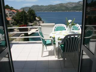 Cozy and amazing seaview apartment - Medvinjak vacation rentals