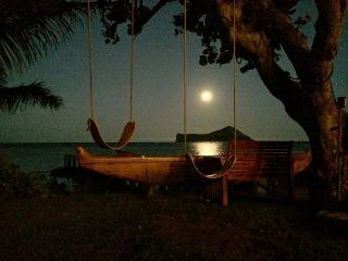 Waimanalo Turtle Cottage - Waimanalo vacation rentals