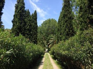 Romantica dependance con accesso diretto al parco - Vicopisano vacation rentals