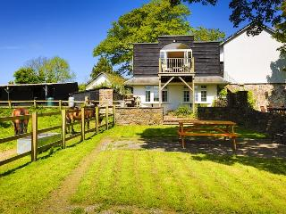 Lovely Cottage with Deck and Internet Access - Bishop's Tawton vacation rentals