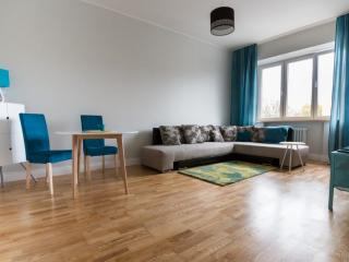 Kosmos apartment with free transfer - Tallinn vacation rentals