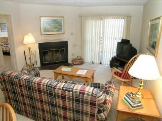Cozy 2 bedroom Condo in Davis with Internet Access - Davis vacation rentals
