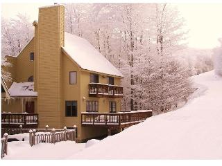 The Haven ski -in ski-out  home sets directly beside the Salamander ski trail - Davis vacation rentals