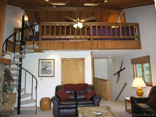Northwoods B1 - Spring Hill vacation rentals