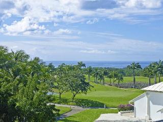 Royal Westmoreland - Cassia Heights 24 - Westmoreland vacation rentals