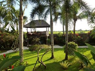 Spacious 5 bedroom Villa in Pererenan - Pererenan vacation rentals