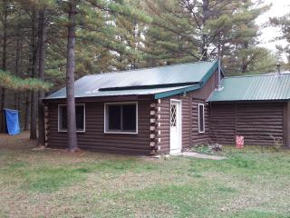 Nice Cabin with Outdoor Dining Area and Television - Baldwin vacation rentals