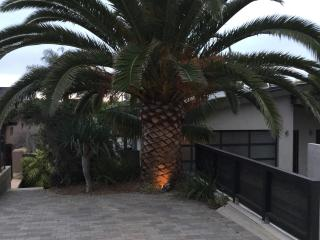 Charming Encinitas vacation Guest house with Internet Access - Encinitas vacation rentals