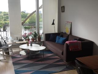 Lovely modern Copenhagen apartment near Harbour bath - Copenhagen vacation rentals
