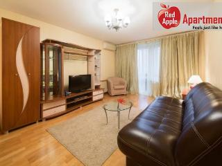 Studio Apartment at Polyanka Area, Moscow - 1114 - Moscow vacation rentals