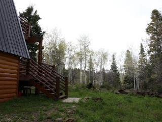 cozy cabin minutes from Park City in the woods - Park City vacation rentals