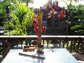 4 bedroom House with Internet Access in Papaikou - Papaikou vacation rentals
