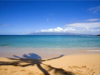 Elegant Napili Villa - steps to beach - Immaculate - Lahaina vacation rentals