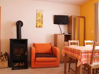 App. Snowdrop 1 at Bohinj lake 2-5 pers. - Bohinjsko Jezero vacation rentals
