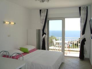 Stylish one-bedroom apartment (2+2) - Cove Zarace (Milna) vacation rentals