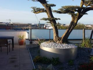 Appart neuf toit terrasse/ vue exceptionnelle - La Rochelle vacation rentals