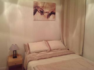 Nice 1 bed Apartment City Center - Dublin vacation rentals