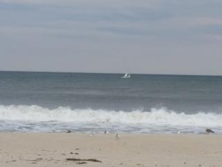 Bring the Family! (Seaside Park/Seaside Heights) - Seaside Park vacation rentals