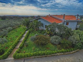 Villa delle Camellie - Vodnjan vacation rentals