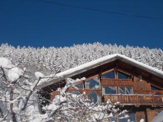 Perfect Chalet with Deck and Internet Access - La Lechere vacation rentals