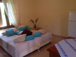 Budget super equipped studio in Chania - Chania vacation rentals