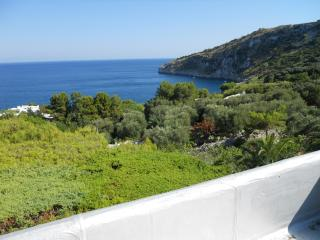 Seaside house in Marina Serra - Marina Serra vacation rentals
