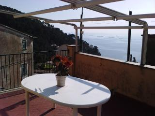 Terrace overlooking the sea near Cinque Terre. - Bonassola vacation rentals