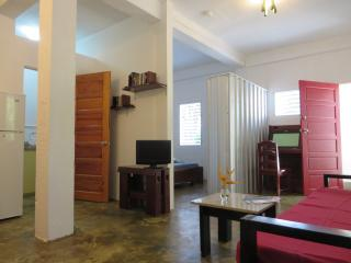 Maya Beach, spacious, modern and relaxing - Placencia vacation rentals