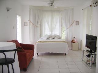 ALMOND BLISS (Ocho RIos Apartment) - Ocho Rios vacation rentals