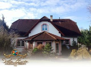 Comfortable Condo with Internet Access and Central Heating - Trebon vacation rentals