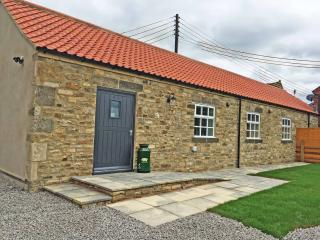 Perfect Cottage with Internet Access and Television - Brancepeth vacation rentals