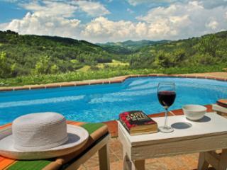 Bright 3 bedroom Pietralunga Villa with Television - Pietralunga vacation rentals
