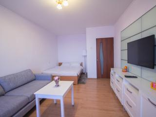 1 bedroom Condo with Internet Access in Moscow - Moscow vacation rentals