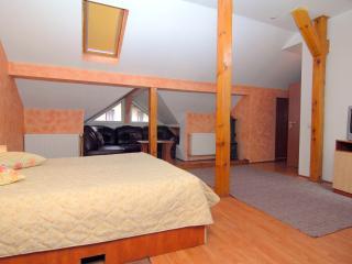 Comfort Family Room close to Citadel - Brasov vacation rentals