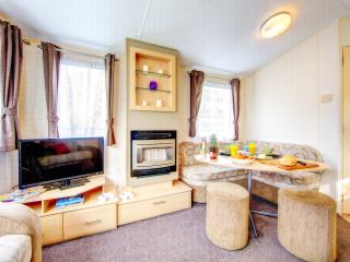 Newquay View Ocean Holiday Home O175 -Pet Friendly - Newquay vacation rentals