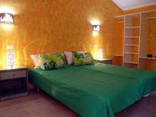 Apartment in Villas Canarias Complex - Playa de las Americas vacation rentals