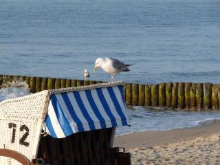 """Ferienwohnung """"Skipper"""" Haus Waterkant - Ostseebad Boltenhagen vacation rentals"""
