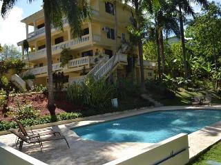 Casa D Palma Unit 2 - Rincon vacation rentals