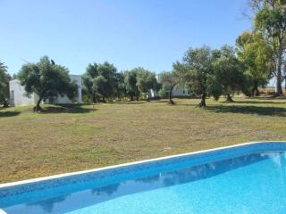 Air-conditioned bungalow in Arcos de la Frontera, Cadiz, with pool and garden, 2km from Golf course - Jijel vacation rentals