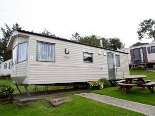 Newquay Sea Breeze Holiday Home SB107-Pet Friendly - Newquay vacation rentals