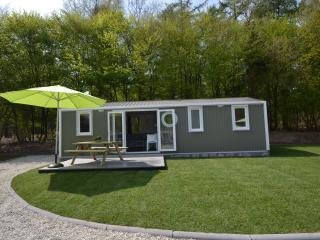 Allurepark de Thijmse Berg - Family cottage - Rhenen vacation rentals